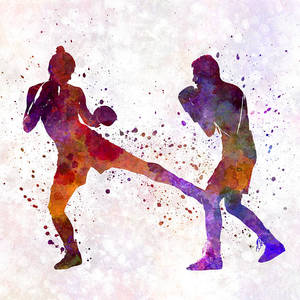кик бокс